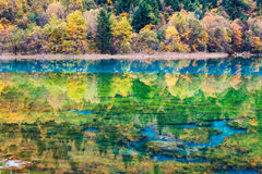 Autumn fairy tale landscapes in jiuzhaigou Royalty Free Stock Image
