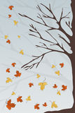 Autumn Fall Royalty Free Stock Images