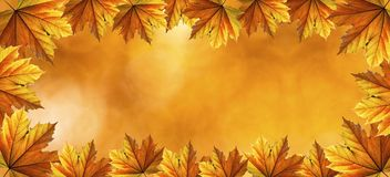 Autumn Fall Background Fotos de archivo libres de regalías