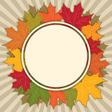 Autumn Fall Background Royalty Free Stock Image