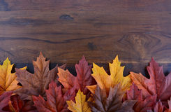 Autumn Fall Background Fotos de Stock Royalty Free