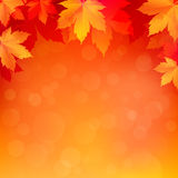 Autumn, fall background with bright golden maple leaves. Abstract illustration with bokeh lights. Blurred soft backdrop. Vector illustration. EPS10 Stock Photo