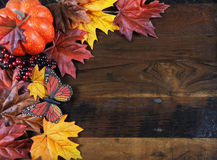 Autumn Fall background with copy space Stock Images