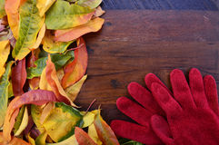Autumn Fall Background on Dark Wood. Royalty Free Stock Images