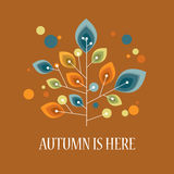 Autumn or fall background with foliage leaves on. Tree. Vintage retro design. Eps10 vector illustration Vector Illustration