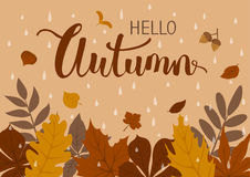 Autumn fall background with forest leaves, rain drops. Autumn fall beige brown background with forest leaves, rain drops Royalty Free Stock Photo