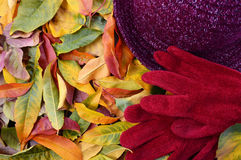 Autumn Fall Background. with Gloves and Hat. Royalty Free Stock Photography