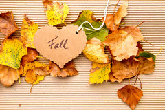 Autumn / Fall - Background. Autumn / Fall leaves on corrugated cardboard Background with heart shape tag Royalty Free Stock Image