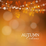 Autumn, fall background with leaves and lights,
