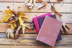 Autumn Fall Background med lönnlöv och böcker royaltyfri fotografi