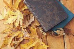 Autumn Fall Background med lönnlöv och böcker fotografering för bildbyråer