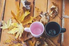Autumn Fall Background med lönnlöv och koppar Autumn Card royaltyfri foto