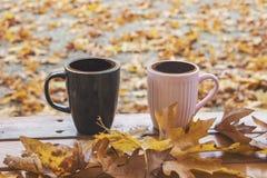 Autumn Fall Background med lönnlöv och koppar - Autumn Card royaltyfria foton