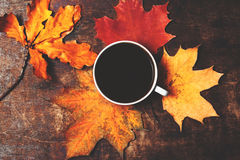 Autumn Fall Background med sidor och koppen av svart kaffe - Au royaltyfria bilder