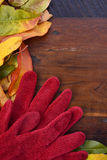 Autumn Fall Background op Donker Hout Stock Afbeelding