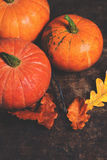 Autumn Fall background with pumpkins and  golden  leaves on rust Royalty Free Stock Photography