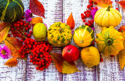 Autumn fall background table setting background vegetables fruit Stock Image