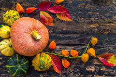 Autumn fall background table setting background vegetables fruit Stock Images
