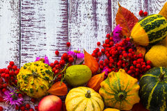 Autumn fall background table setting background vegetables fruit Royalty Free Stock Photography