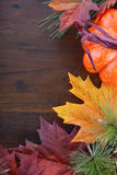 Autumn Fall background Stock Image