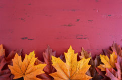 Autumn Fall background. For Thanksgiving or Halloween with leaves and decorations on rustic wood table with copy space for your text here Royalty Free Stock Images