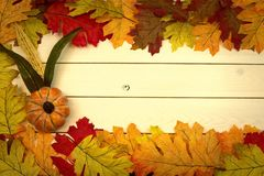 Autumn, fall, background on whitewashed knotty pine with leaves stock photos