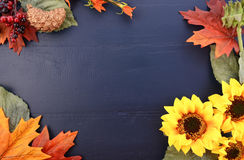 Autumn Fall Background With Decorated Borders. Stock Image