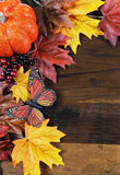 Autumn Fall bakgrund - lodlinje med kopieringsutrymme royaltyfri fotografi