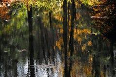 AUTUMN-FALL- belle réflexion de couleurs d'automne images libres de droits