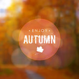 Autumn fall blurred background with maple leaf and forest. Modern design for cards, invitations, leaflets, brochures, covers. Royalty Free Stock Photo