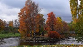 Autumn fall in city park stock footage