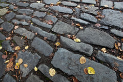 Autumn/fall cobblestone background Royalty Free Stock Photo