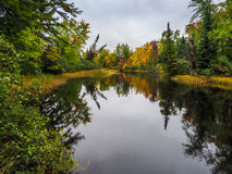 Autumn Fall Color Marsh Bonnechere 2 Provincial Park. Waterfall In Algonquin Provincial Park Forest Hiking Trail Fall Colors Royalty Free Stock Photos