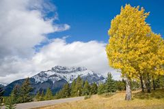 Autumn Fall Colors Royalty Free Stock Photography