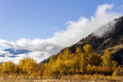 Autumn Fall Colors Similkameen Valley Fotografia de Stock