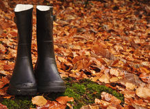 Autumn Fall concept wellington boots leaves Stock Photography
