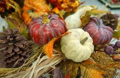 Autumn, fall decoration with a pumpkin, gourds, pine cone, leaves. Natural background. Royalty Free Stock Images
