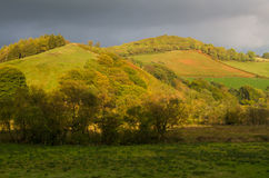 Autumn Fall Fields and Trees, Wales, United Kingdom. Royalty Free Stock Images