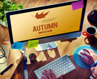 Autumn Fall Foliage Fresh Nature Season Vibrant Concept Royalty Free Stock Images