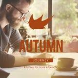 Autumn Fall Foliage Fresh Nature-Seizoen Trillend Concept Royalty-vrije Stock Afbeeldingen