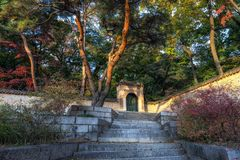 Autumn fall foliage over changdeokgung stock images