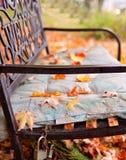 Autumn or fall foliage. Vintage autumn or fall foliage Royalty Free Stock Photo