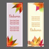 Autumn fall forest leaves vertical banner. Additional file in eps 10 vector illustration