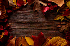 Autumn fall frame golden red leaves on wood. Background copy space stock images