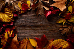 Autumn fall frame golden red leaves on wood. Background copy space Stock Image