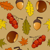 Autumn or Fall Fruits Seamless Pattern Stock Image