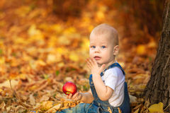 Autumn, fall, girl, child, little, happy, kid, nature, park, leaves, season, portrait, yellow, foliage, baby, outdoor, caucasian, Stock Photography
