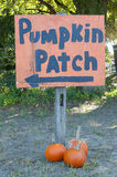 Autumn Fall Halloween Pumpkin Patch Royalty Free Stock Image