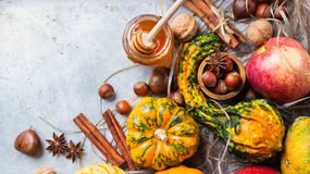 Autumn fall halloween still life composition with pumpkin nuts chestnut royalty free stock images