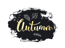 Autumn fall handwritten hand drawn grunge paint brush stroke texture. Background in black and gold Stock Image